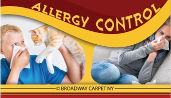 Allergy Control - Manhattan 10008