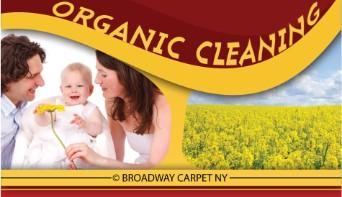 Organic Cleaning - Manhattan 10008