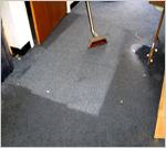 Carpet cleaning Free Estimate